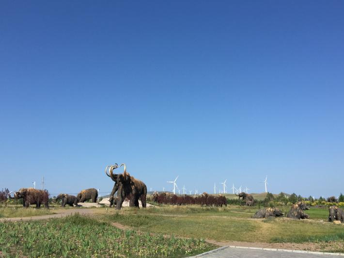 猛犸象公园