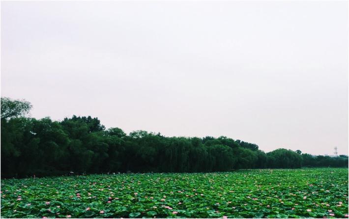 北京圆明园