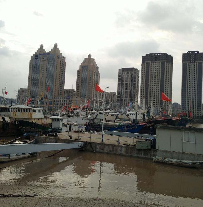 沈家门渔港
