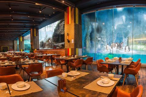 珠海长隆企鹅酒店自助餐-珠海长隆企鹅酒店自助 晚餐 家庭票(2大1小)