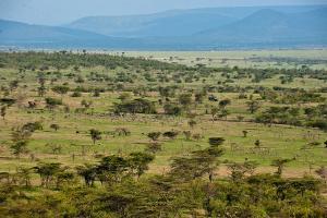 肯尼亚-【跟团游】肯尼亚8天*动物追踪*广州往返<典>