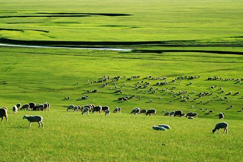 呼伦贝尔.满洲里.哈尔滨.沈阳.双飞双卧7天.呼伦贝尔大草原