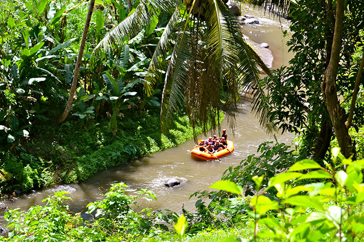 【誉·智趣营】巴厘岛6天*亲子*亲近自然<农场烹饪课程,海豚亲密互动,手工香皂DIY,黑沙滩骑马,巴厘动物园>