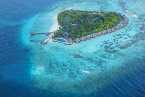 马尔代夫-【自由行】马尔代夫泰姬珊瑚6天4晚 广州往返。等待确认