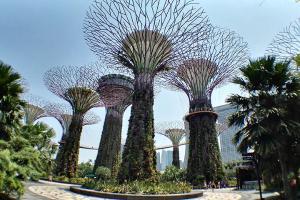 新加坡【移动-【跟团游】新加坡6天*印象新加坡5晚6天游 北京往返*等待确认