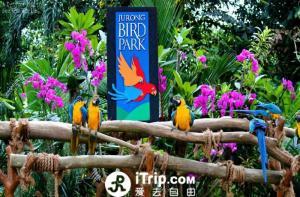 新加坡-【当地玩乐】新加坡裕廊飞禽公园门票(含游览车).等待确认
