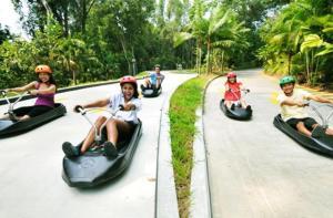 新加坡-【当地玩乐】新加坡圣淘沙斜坡滑车+空中吊椅体验之旅 .等待确认