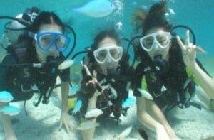 塞班岛-【当地玩乐】塞班岛体验潜水 船潜30分钟 含接送 中文导游 潜水用具.等待确认