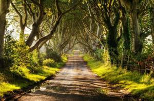 欧洲-【当地玩乐】欧洲北爱尔兰维斯特洛拍摄地(权力的游戏)一日游(贝尔法斯特往返)含巨人之路.等待确认