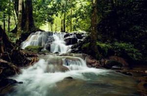 泰国-【当地玩乐】泰国 甲米雨林游.等待确认