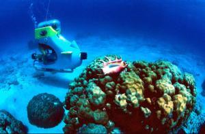 毛里求斯-【当地玩乐】毛里求斯海底摩托 2小时 骑着摩托在印度洋海底探险 含酒店接送.等待确认