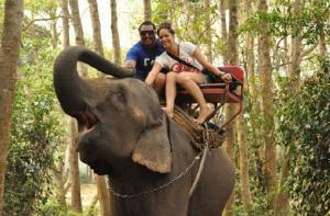 苏梅岛-【当地玩乐】苏梅岛热带丛林瀑布骑大象(30分钟).等待确认
