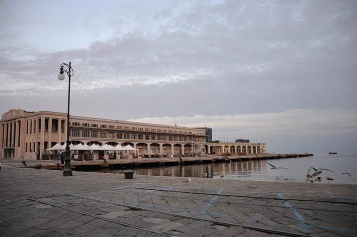 酒店对面的码头和海湾,海鸟毫无顾忌地在岸边觅食及玩耍