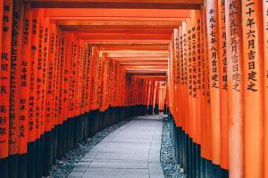 澳门-【跟团游】日本大阪、京都、和歌山5天*古都联游*澳门往返<樱花巡礼,和歌山小火车体验,1晚温泉酒店,佛山自组>