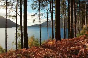 苏格兰-【当地玩乐】苏格兰印象 苏格兰西部高地 湖泊+城堡历史探索一日游(爱丁堡往返).等待确认