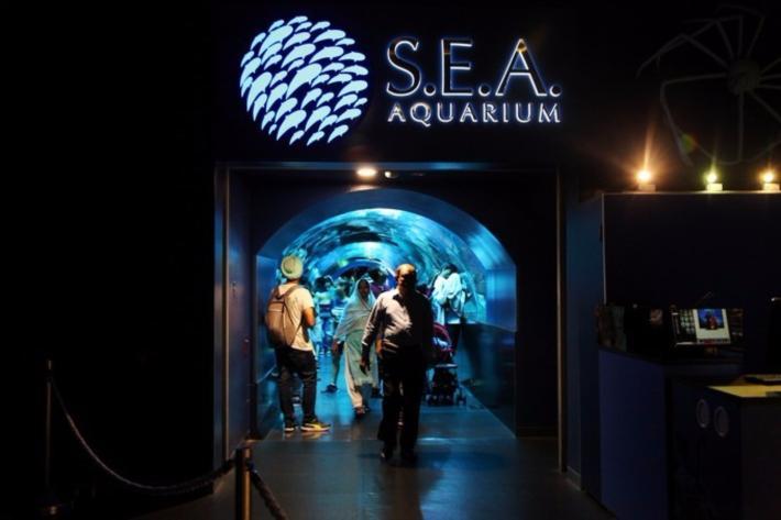 S.E.A.海洋馆