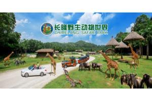 广州长隆- 广州长隆野生动物世界