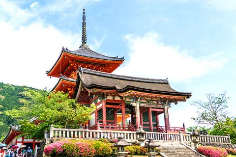 日本大阪、京都、奈良、和歌山6-7天*魅力关西