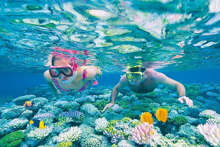 【颂·深度】澳洲10天*专机畅游伊莉特夫人岛外堡礁*澳大大*纯玩<品龙虾生蚝,入住大洋路沿岸小镇>
