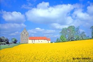 欧洲-【尚·深度】丹麦、瑞典12天*ASD*北欧幸福慢生活*自然之路文岛骑行*安徒生印记*设计物语<地铁艺术殿堂,南国世外桃源斯科纳省>