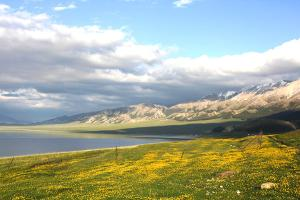 新疆-【跟团游】新疆全景三飞8天*吐鲁番、天池、喀纳斯、那拉提*佛山<升级一晚超豪华酒店>