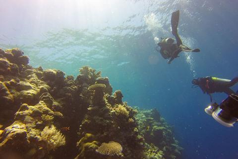 美娜多5/6天.进阶级潜水员考证.广州往返<专业教学>