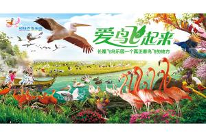广州长隆-广州长隆飞鸟乐园