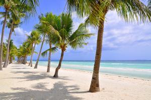 海滩-【典·休闲】菲律宾宿雾4天*精选*悠游之旅*广州直航<高级酒店,圣佩特罗堡,圣婴教堂,麦哲伦十字架>