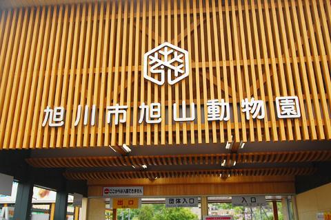 日本【当地玩乐】北海道旭山动物园一日游【北海道定期观光巴士】