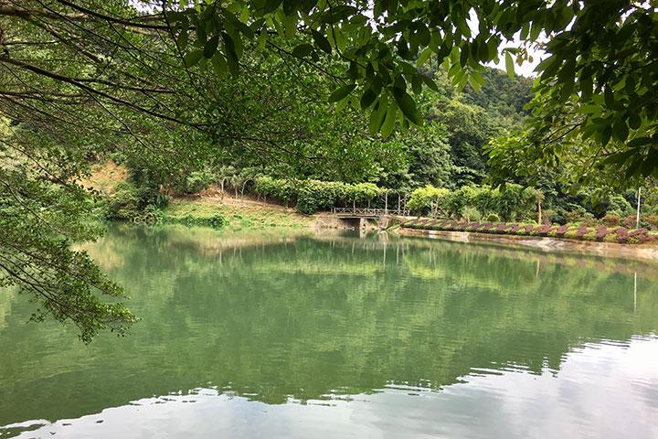 【生态】惠州、河源2天*罗浮山*野趣沟*入住超豪华希尔顿逸林酒店*纯玩<一价全包>