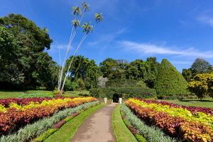 斯里兰卡-【颂·博览】斯里兰卡、新加坡8天*星享*畅游之旅<康提佛牙寺,加勒古堡,圣淘沙名胜世界>