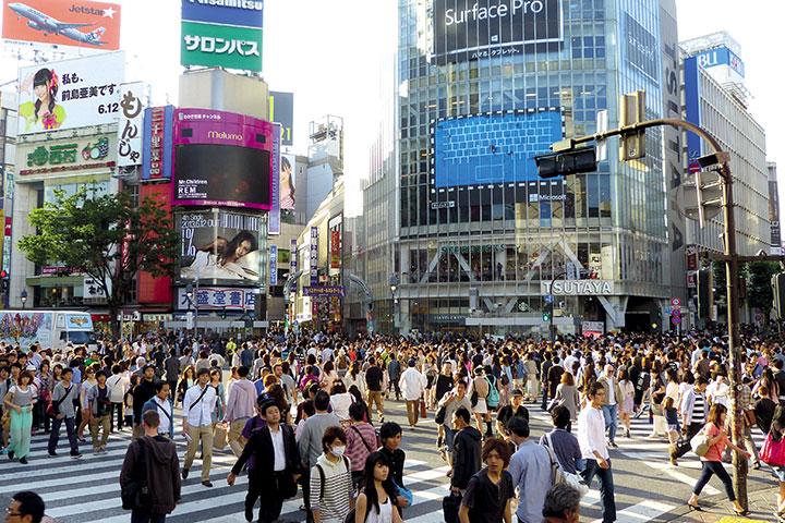 【尚·慢享】日本东京、富士、镰仓、江之岛6天*温泉特惠<东京筑地市场寻味,江之岛镰仓回忆,一日自由活动>