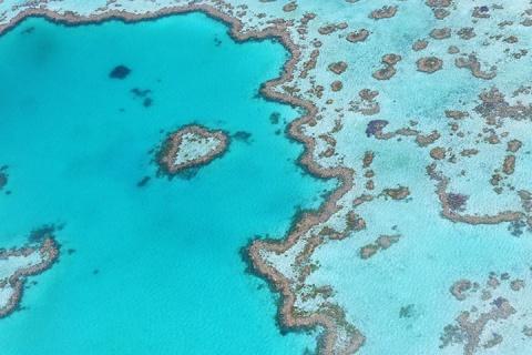 澳洲8天.连住三晚汉密尔顿岛.外堡礁.纯玩.浪漫白天堂沙滩