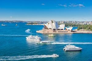 澳大利亚-【尚·深度】慢游澳洲(悉尼)8天*名人带队*萌物总动员*亲子纯玩<寻踪野生海豚,悉尼市区连住四晚,参观悉尼大学>