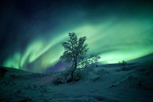 芬兰-【尚·猎奇】芬兰、爱沙尼亚10天*玻璃屋赏极光*捕帝皇蟹*探访圣诞老人及北极圈证书*极地约会拉普兰驯鹿<北极圈三晚,狗拉雪橇,参观冰酒店,品尝正宗三文鱼,AYFC>