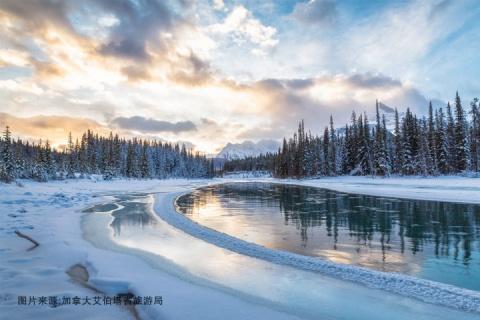 加拿大西岸11天.落基山四大国家公园.班夫温泉.冰走峡谷.暗夜星空保护区观星.亚伯拉罕湖