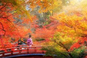 京都-【颂·深度】日本本州深度6天*赏枫限定<京都和服试穿,可选环球影城>