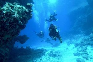 【潜水考证】美娜多8天*双证连考*广州往返*等待确认<初级+进阶级连考,中英文双语教学,国际潜水机构认证>