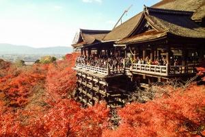 日本-日本【當地玩樂】京都清水寺+二、三年坂+祗園+伏見稻荷大社拼車一日游