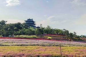 北京世界园艺博览会(世园会)