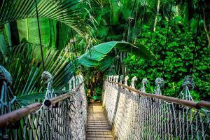 吉林正佳雨林生态植物园当日成人票(随买随用)
