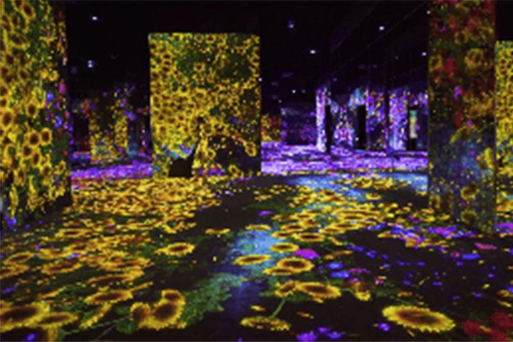 teamlab生命之森与未来游乐园-广州teamlab生命之森与未来游乐园夜场门票(限量抢购)