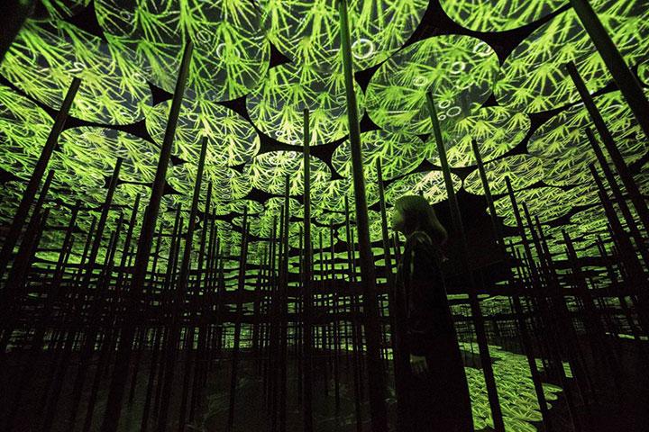 【智趣营】广州1天*珠江新城K11艺术导赏*广东省博物馆*teamLab生命之森与未来游乐园展览