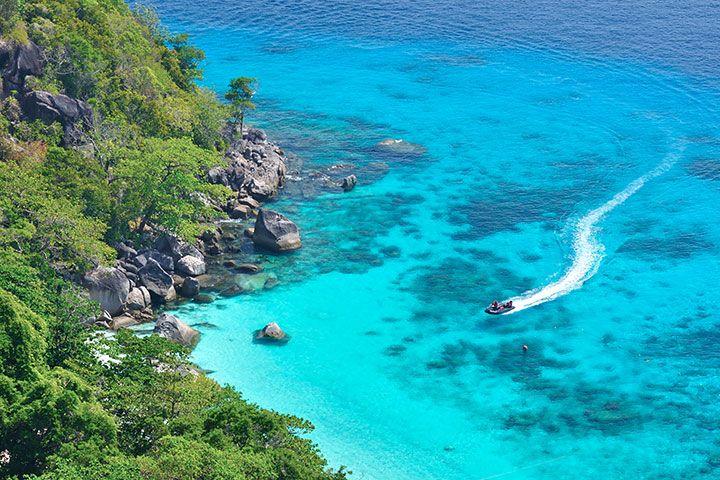 【当地玩乐】泰国普吉1天*蓝鲸号双体游艇出海:斯米兰一日游