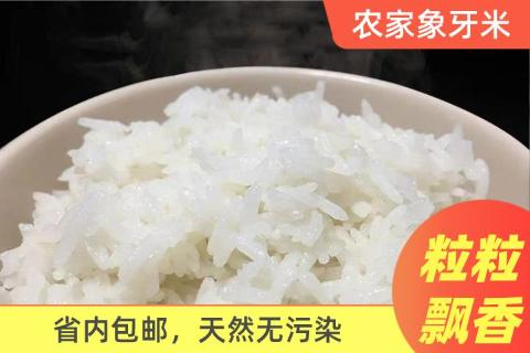 连州连山县农家象牙米10斤装