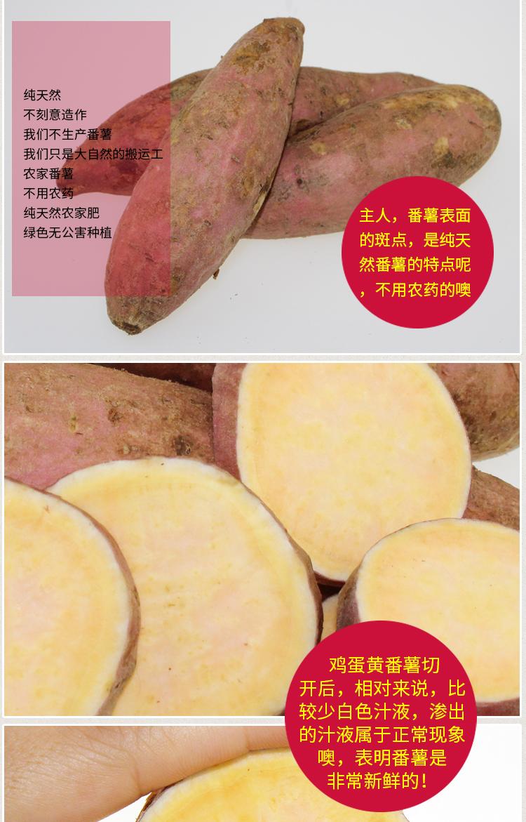 鸡蛋黄番薯_09.jpg