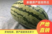 新疆原产超甜西瓜*约14斤