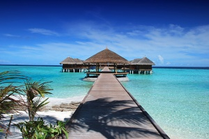 【尚·休閑】斯里蘭卡、馬爾代夫8天*魅力雙國<2晚蘭卡+4晚馬代,吉普車游名乃利亞公園,佛牙寺>