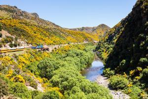【當地玩樂】新西蘭南島極南7日游<峽谷火車、極南打卡、峽灣游輪>逢周一出發*等待確認