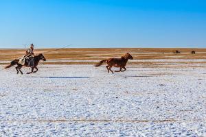 【譽·深度】呼和浩特、鄂爾多斯、雙飛4天*敕勒川草原廣之旅牧場*響沙灣<五星級自助晚餐,騎駱駝>
